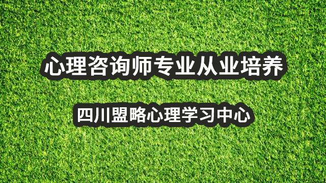 心理咨询师专业从业培养,四川盟略心理学习中心